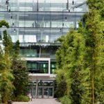 """Energiesparen mit Bepflanzung"" (Foto Krolkiewicz)"