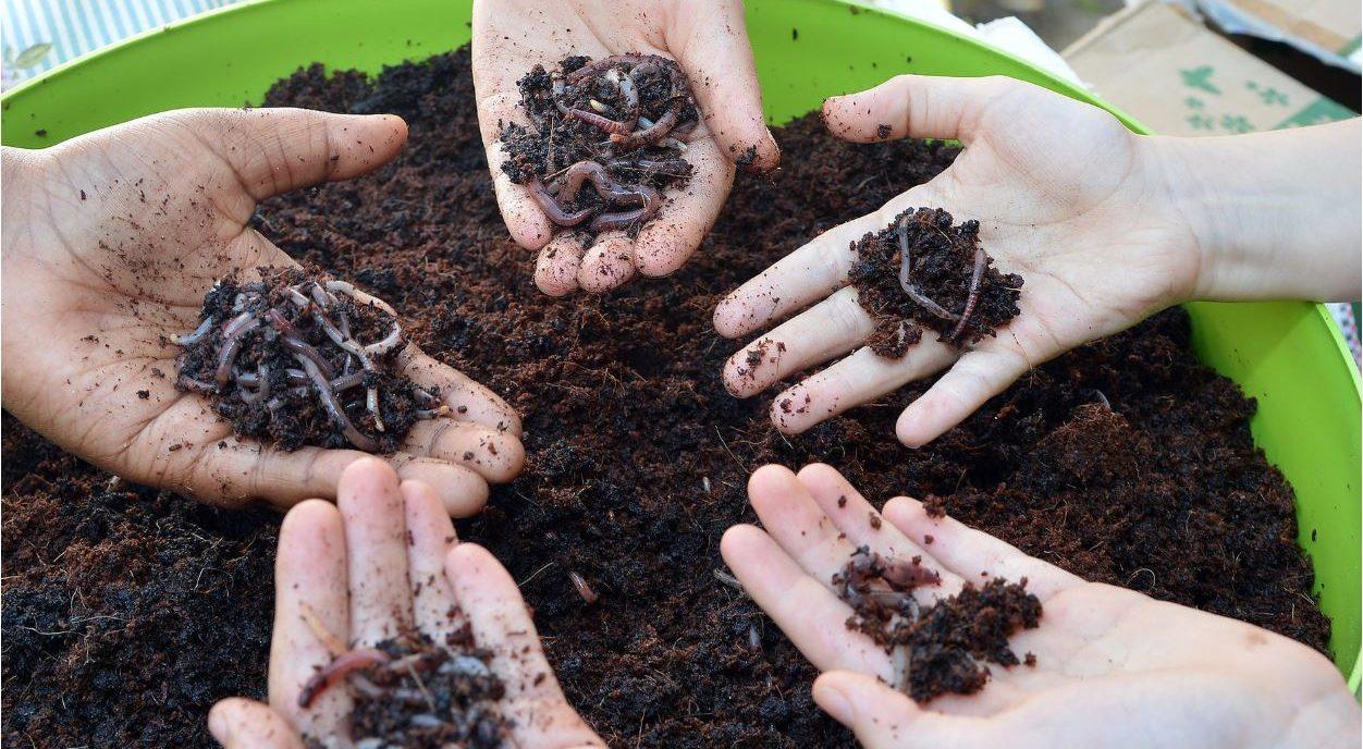 Stadt und Land Berlin spendet Komposter für Schüler der Hermann-Boddin-Schule
