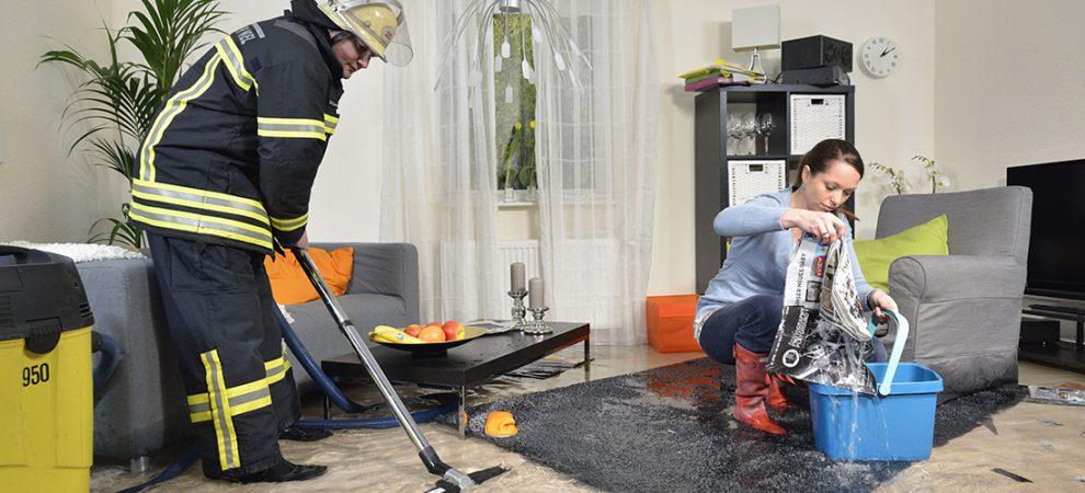 Foto: www.ifs-ev.org